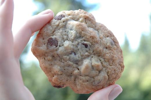 Banana-Walnut Chocolate-Chunk Cookies