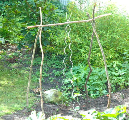 Do-it-yourself trellis