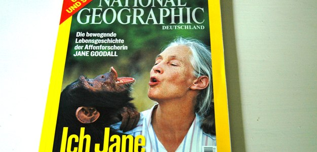 Meeting Jane Goodall