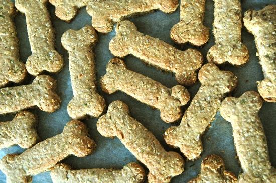 Homemade Vegetarian Dog Treats