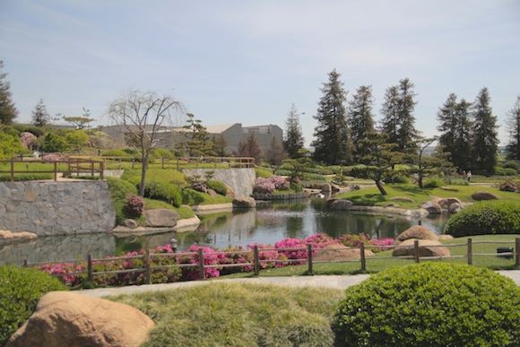 View over the japanese garden