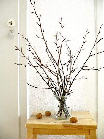 Branches in a maison jar