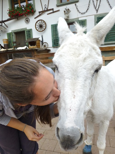 ... and kissed a donkey