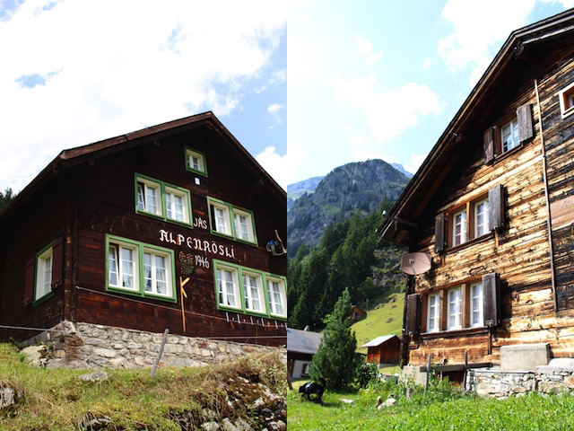 Rustic old swiss houses