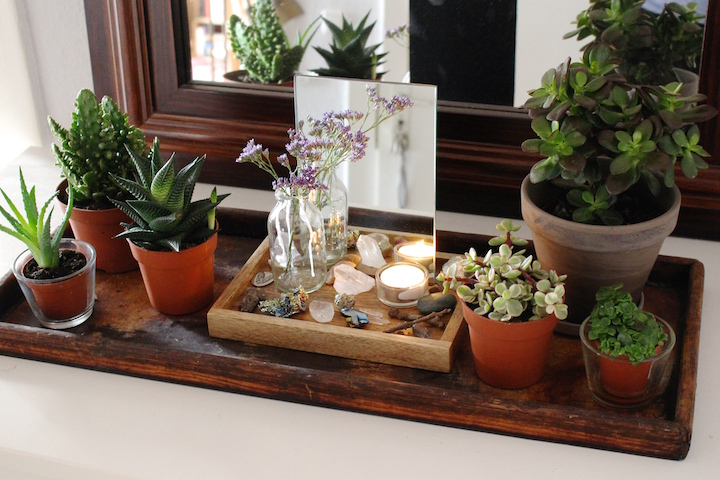 tray of good vibes with crystals and succulents