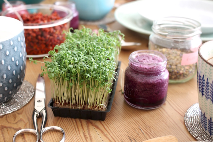 cress and sun dried tomato sprinkles
